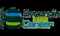 Synergie-Lyon